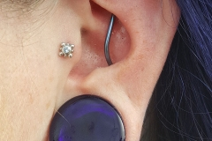 Conch Industrial Piercing